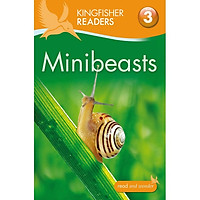 Kingfisher Readers Level 3: Minibeasts
