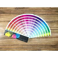 Pantone Màu (Color Chart)