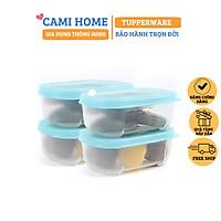 Hộp Trữ Đông Freezermate Mini 140 ml Tupperware, Hộp Bảo Quản Thực Phẩm, Nhựa Nguyên Sinh