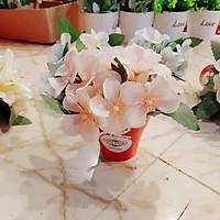 Chậu hoa tú cầu nhí dễ thương ( nhiều màu)