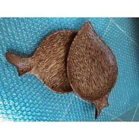 Combo 2 Dĩa gỗ dừa hình lá lâu năm