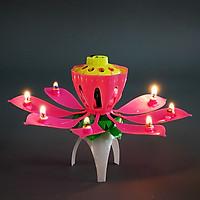 Nến sinh nhật nở hoa và phát nhạc - Màu Hồng