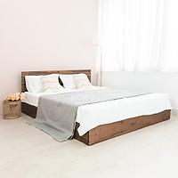 Giường Ngủ Gỗ Tràm MOHO MALAGA 302