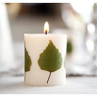 Nến sáp đậu nành trang trí lá ép, mùi hương hoa nhài