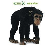 Mô hình thu nhỏ: Tinh Tinh mẹ - Chimpanzee Female, hiệu: CollectA, mã HS 9651030[88493] -  Chất liệu an toàn cho trẻ - Hàng chính hãng