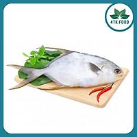 [Chỉ Giao HCM] 1KG Cá Chim Nguyên Con 4TK Food, Hải Sản Tươi Sống, Không Chất Bảo Quản, Nhập Trực Tiếp Từ Miền Trung