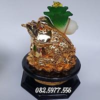 Cóc ( thiềm từ) cõng bắp cải chiêu tài lộc 24 cm- vàng