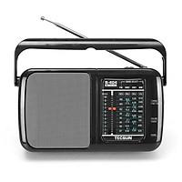 Radio Tecsun R-404 (Hàng nhập khẩu)