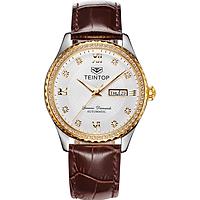 Đồng hồ nam chính hãng Teintop T8629-11
