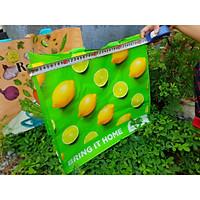 Túi đi chợ size 38x43x20cm, túi sách gia dụng chống thấm sử dụng nhiều lần thân thiện với môi trường