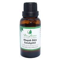 Tinh dầu khuynh diệp (Bạch đàn) - Eucalyptus 30ml | Bio Aroma