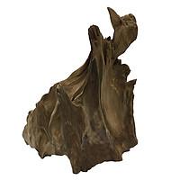 Gỗ lũa ngọc am tự nhiên phong thủy (Mã 34 Cao 25cm x 21cm - 1kg)