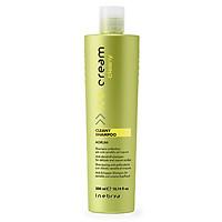 Dầu gội Inebrya Ice-Cream Cleany Shampoo (Agrumi) ngăn ngừa gàu, cân bằng dầu Italy 300ml