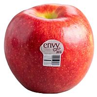 [Chỉ Giao HN] - Combo 5 quả táo Envy size 100