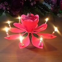 Nến sinh nhật nở hoa và phát nhạc V.2 - Màu hồng