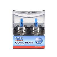 Bộ 2 Bóng Đèn Ô Tô H1 Coolblue 12V 365- Auto (55W) - Xanh