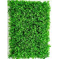 Tấm cỏ nhựa xà lách xoong