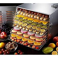 Tủ sấy thực phẩm, hoa quả 10 khay