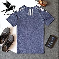 áo thun thể thao nam THUN LẠNH co dãn 4 chiều loại áo thể thao hút mồ hôi tốt hạt mè
