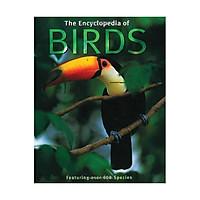 The Encyclopedia Of Birds S08971