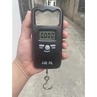 Cân móc treo mini NiNDA SN50T, cân điện tử cầm tay bỏ túi nhỏ gọn, sử dụng cân hành lý du lịch máy bay tàu xe, cân hoa quả thực phẩm bán hàng rong, di động- Hàng Chính Hãng