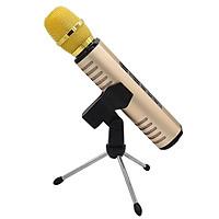 Micro Karaoke Kèm Loa Bluetooth Không Dây Cực Hay - Hàng Chính Hãng PKCB