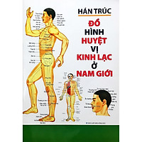 Đồ Hình Huyệt Vị Kinh Lạc Ở Nam Giới (Tái Bản 2019) - Tặng Kèm Bookmark GIGA