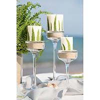 Combo 3 nến thơm cao cấp bằng sáp đậu nành và tinh dầu hữu cơ sả chanh, trang trí lá dương xỉ tự nhiên