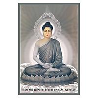 Tranh Phật Giáo Phật Thích Ca Mâu Ni 2056