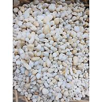 Sỏi màu trắng sữa trang trí bể cá, chậu cây, kích cỡ nhỏ vừa phải, bao 1kg