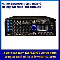 Amply Bluetooth 12 sò đại Cali.D&Y 989D - Hàng chính hãng