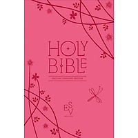 Holy Bible : English Standard Version (Esv) Anglicised Pink Compact Gift Edition with Zip