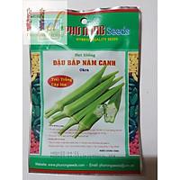 PN - Hạt giống Đậu Bắp 5 Cạnh Trái Trắng Cây Lùn - Trồng Rau Xanh Rau Sạch Bằng Đất Sạch, Mùn Dừa Và Phân Bón Hữu Cơ