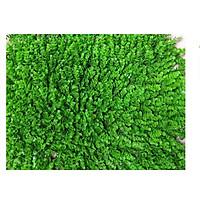 Tấm thảm cỏ nhân tạo mắt trâu trang trí sự kiện cửa hàng nhà cửa 60x40cm cực đẹp (Hàng Việt Nam)