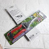 Kéo mũi nhọn bằng inox chuyên cắt cành cây nhỏ, kéo tỉa lá, kéo cắt trái cây, kéo cắt chùm nho sử dụng một tay, Aquamate FSG-1 hàng nhập khẩu Đài Loan