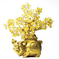Cây Tài Lộc - Cây Đá phong thủy Thạch Anh vàng  tự nhiên đế Heo vàng may mắn HANMYNGHE