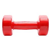 Tạ Tay Nhập Khẩu 4kg Sportslink TTNK4KGDO - Đỏ