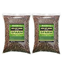 Combo 2 gói viên đất nung (sỏi nhẹ) 5 - 10mm trồng lan, sứ, sen đá, thủy canh Sfarm (5dm3) - Bonsai soil