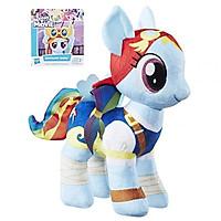 Pony Bông - Chiến Binh Cầu Vồng MY LITTLE PONY C2709/B9820
