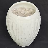 Lọ Bảo Bình Thủy -Bình Gốm Sứ Đẹp - Mx - Hóa Giải Thế Sát Nhà Vệ Sinh, Thu Hút Uế Khí, Âm Khí