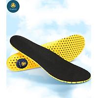 Lót giày thể thao tổ ong EVA loại cao cấp đế dày 1.8cm đàn hồi cực êm chân, thoáng khí - buybox - BBPK128
