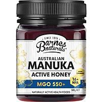 Barnes Naturals Australian Manuka Honey 500g MGO 550+
