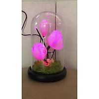 Bình hoa đèn led sợi quang đổi màu - bình hoa trang trí - bình hoa mộc lan cắm điện 220V - BH208Y