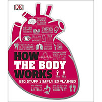 DK Big Stuff Simply Explained: How The Body Works