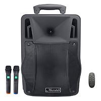 Loa Kéo Microtek MTK-06 (250W) - Hàng chính hãng