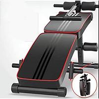 Ghế tập bụng - máy gập cơ bụng đa năng phòng gym dáng cong tập thể dục - lưng -hông