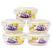 Bộ 5 Hộp Thủy Tinh Chịu Nhiệt Nắp Gài Hình Tròn Glass Happy Cook HCG-040C*5 (400ml / Hộp)