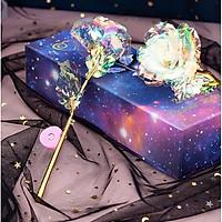 Quà Tặng Valentine - Hoa Hồng Mạ Vàng 24k Galaxy Phát Sáng Có Đèn Led
