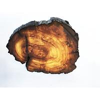 Khoanh gỗ trang trí handmade (9x10x2cm)