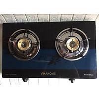 Bếp đôi mặt kính siêu mỏng VINAHOME-VH600 - Hàng chính hãng